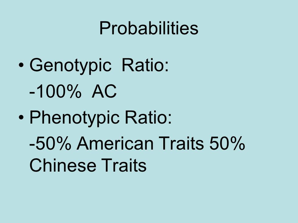 Probabilities Genotypic Ratio: -100% AC Phenotypic Ratio: -50% American Traits 50% Chinese Traits