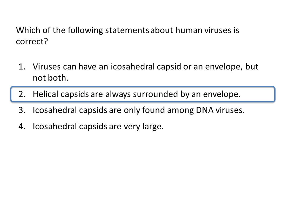 Which of the following statements about human viruses is correct
