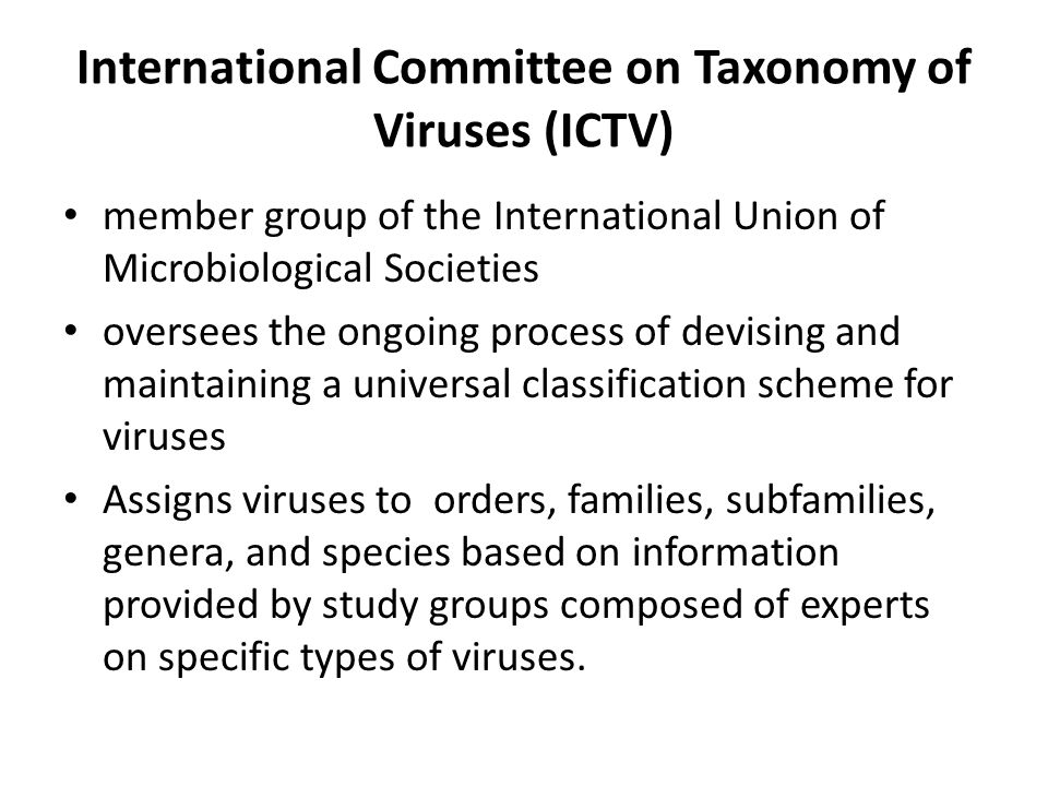 International Committee on Taxonomy of Viruses (ICTV)