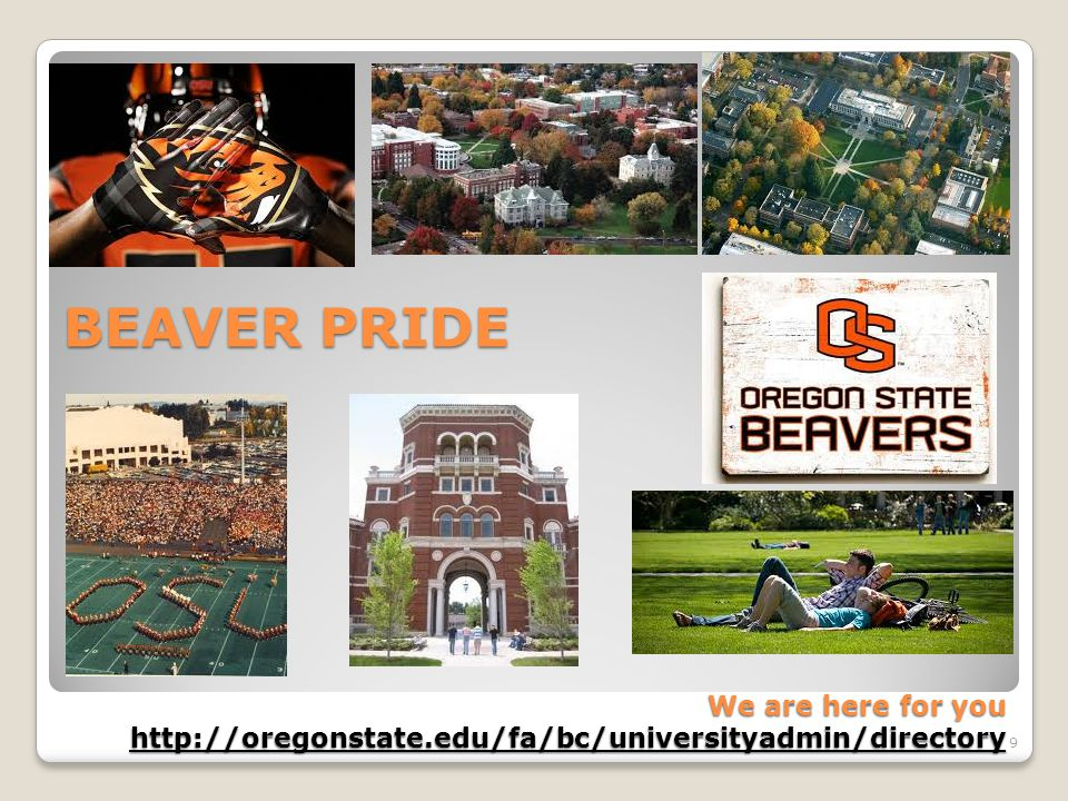 BEAVER PRIDE We are here for you http://oregonstate.edu/fa/bc/universityadmin/directory