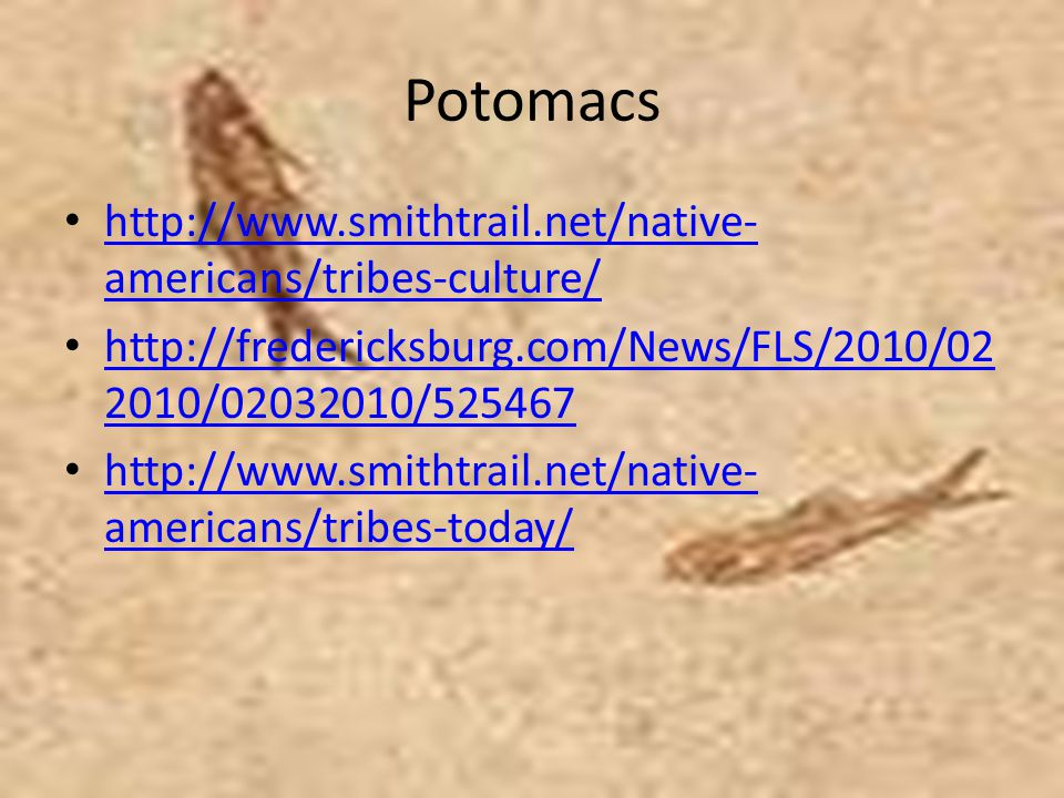 Potomacs http://www.smithtrail.net/native-americans/tribes-culture/