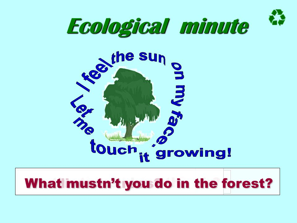 Ecological minute What mustn't you do in the forest