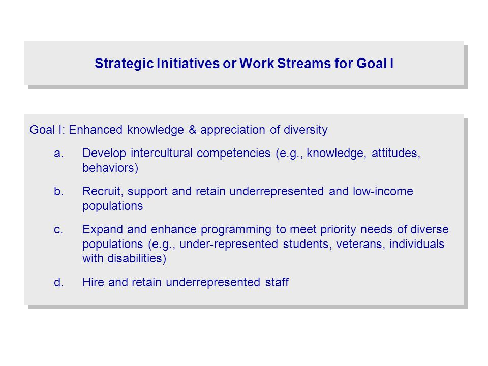 Strategic Initiatives or Work Streams for Goal I