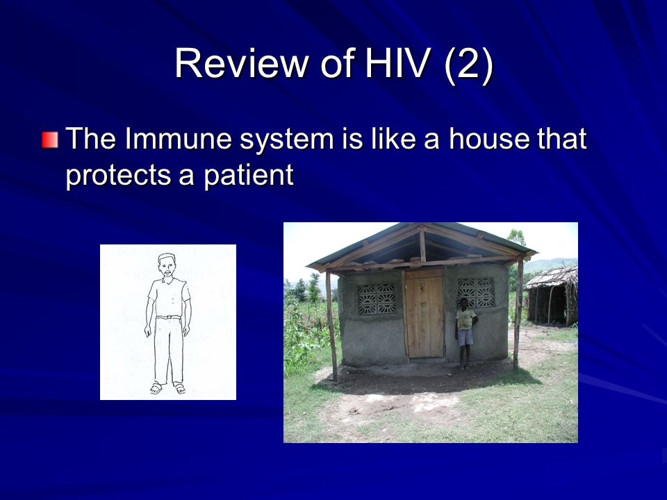 Review of HIV (2) The Immune system is like a house that protects a patient