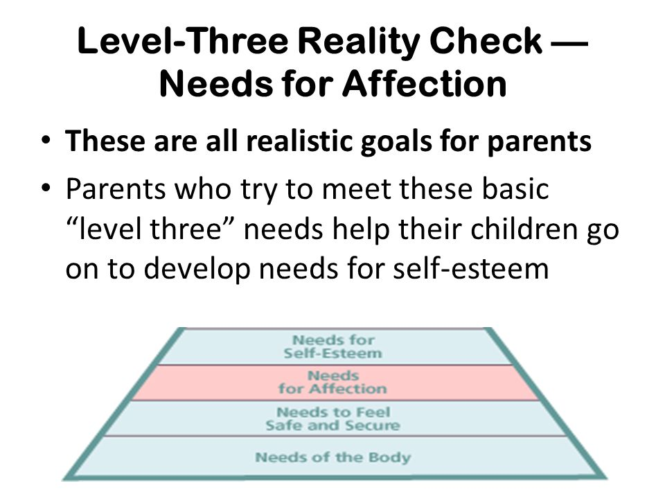Level-Three Reality Check — Needs for Affection