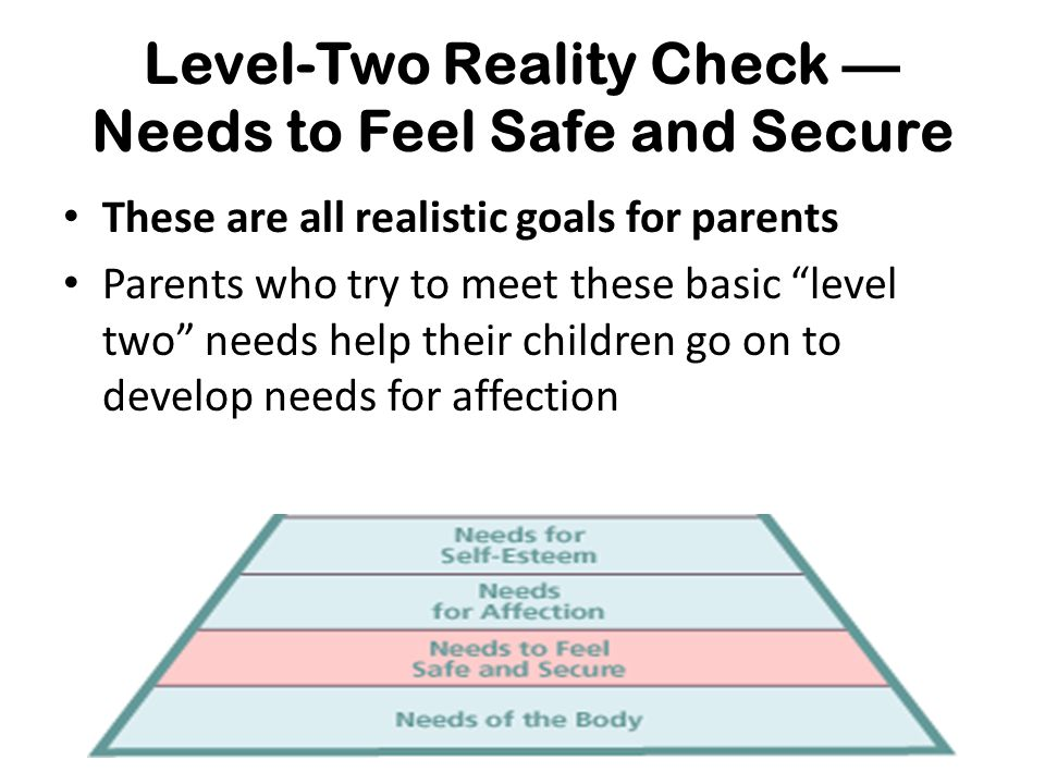Level-Two Reality Check — Needs to Feel Safe and Secure