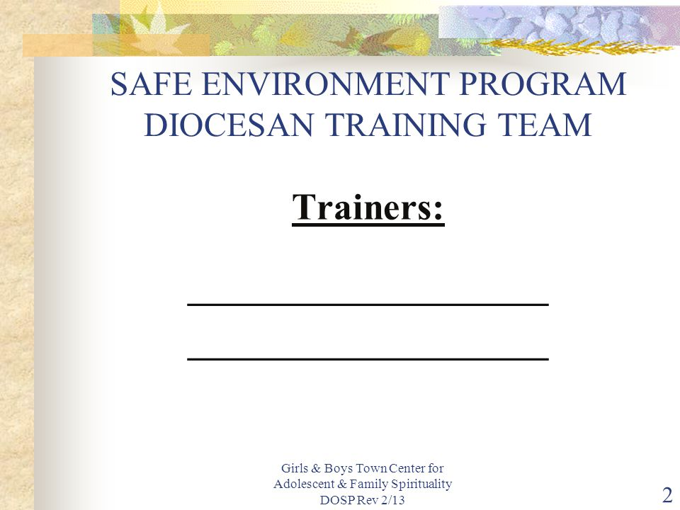 SAFE ENVIRONMENT PROGRAM DIOCESAN TRAINING TEAM