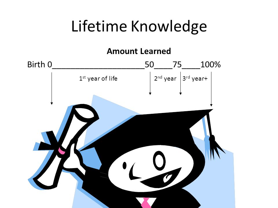 Lifetime Knowledge Amount Learned