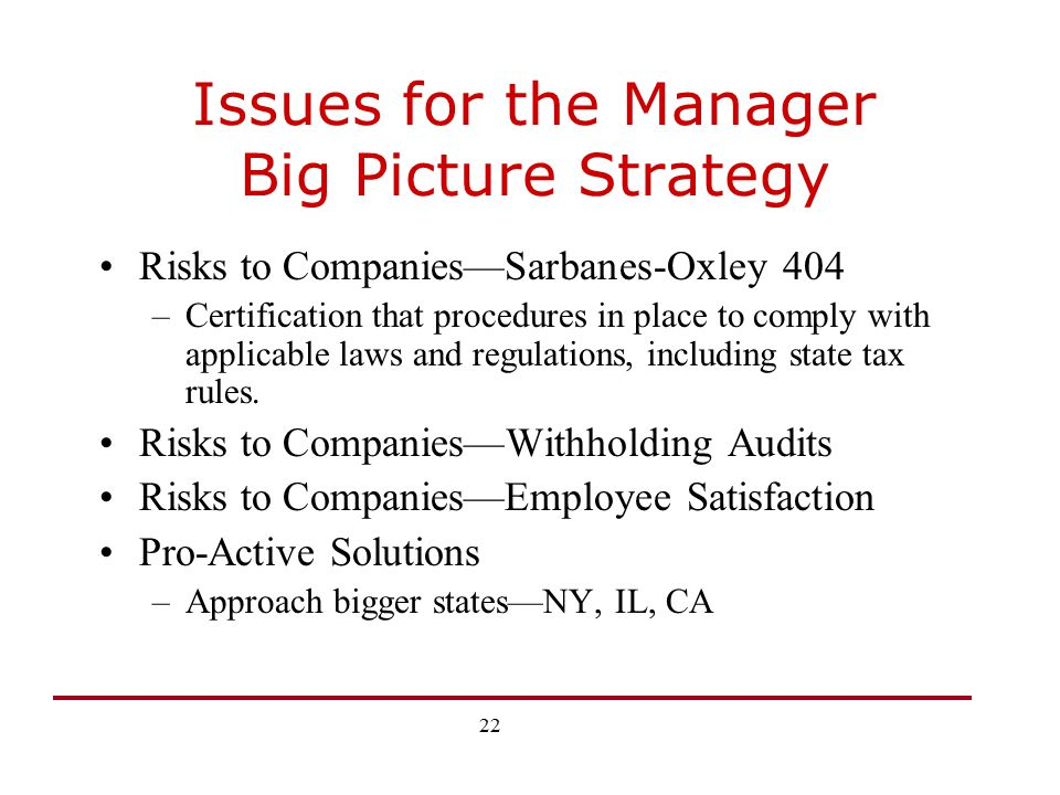 Issues for the Manager Big Picture Strategy