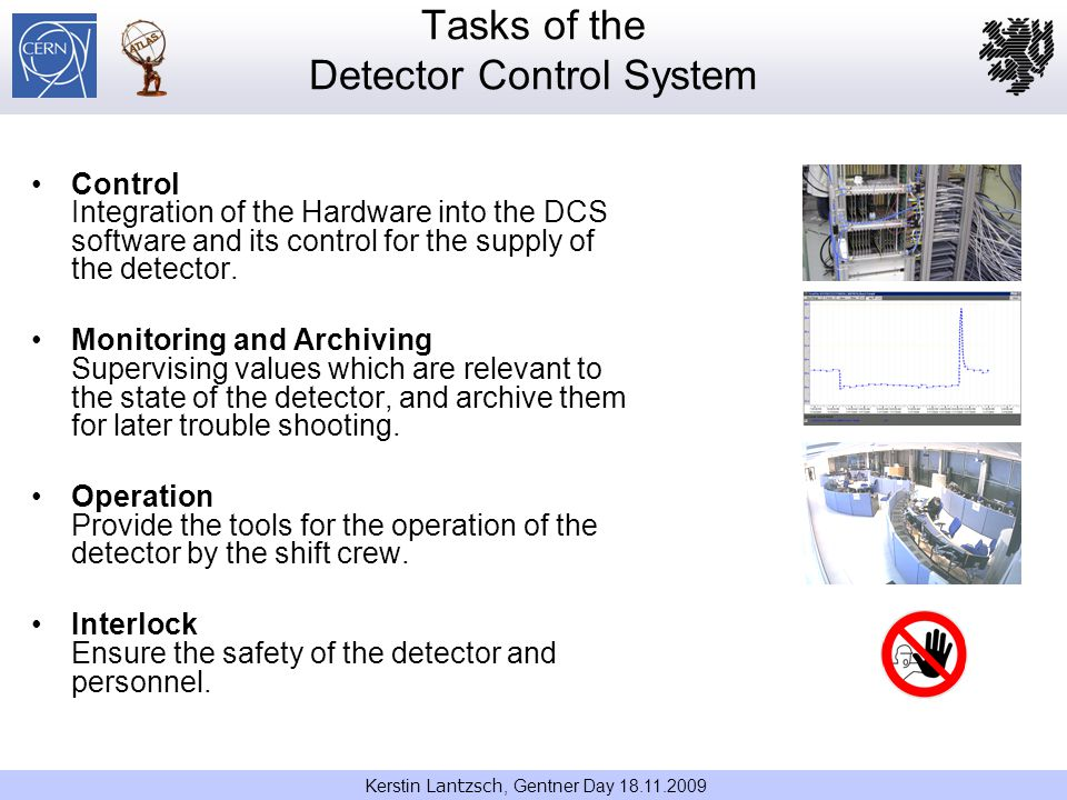 Tasks of the Detector Control System