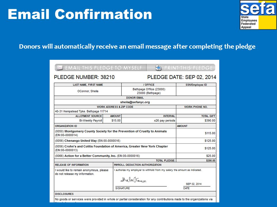 Email Confirmation Donors will automatically receive an email message after completing the pledge