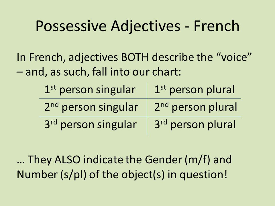 Possessive Adjectives - French