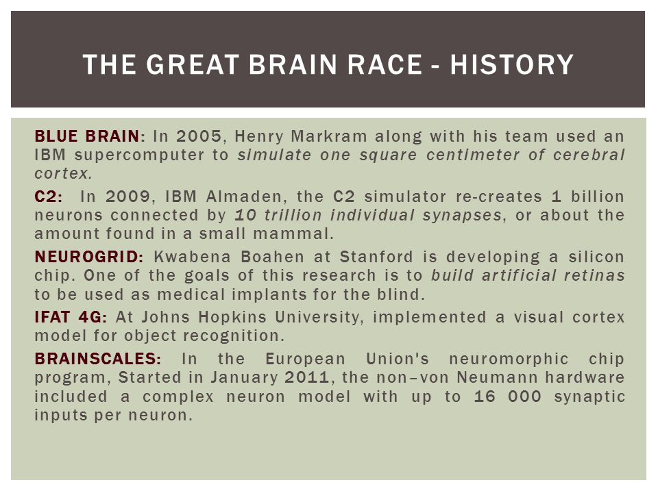 The Great Brain Race - History