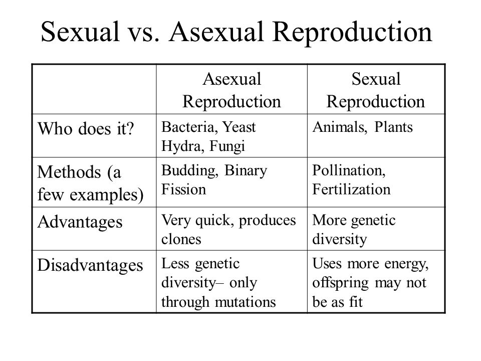 Advantages of sexual and asexual reproduction in fungi