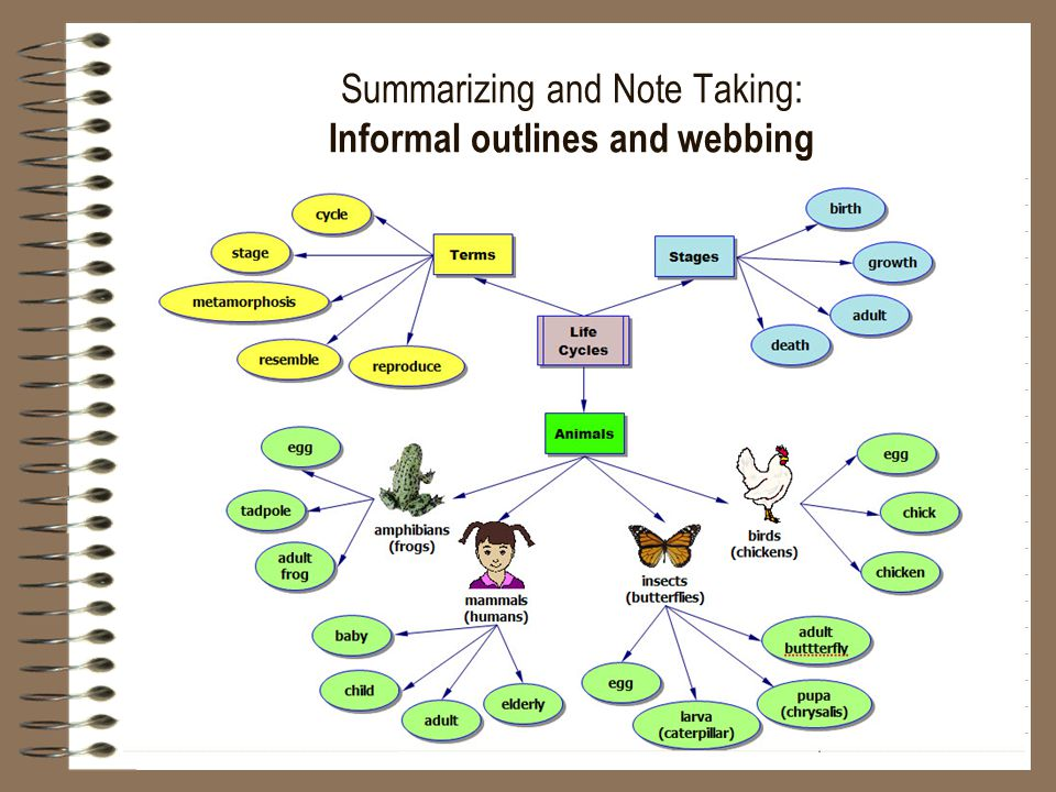 Summarizing and Note Taking: Informal outlines and webbing