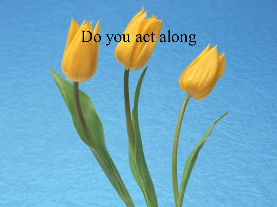 Do you act along