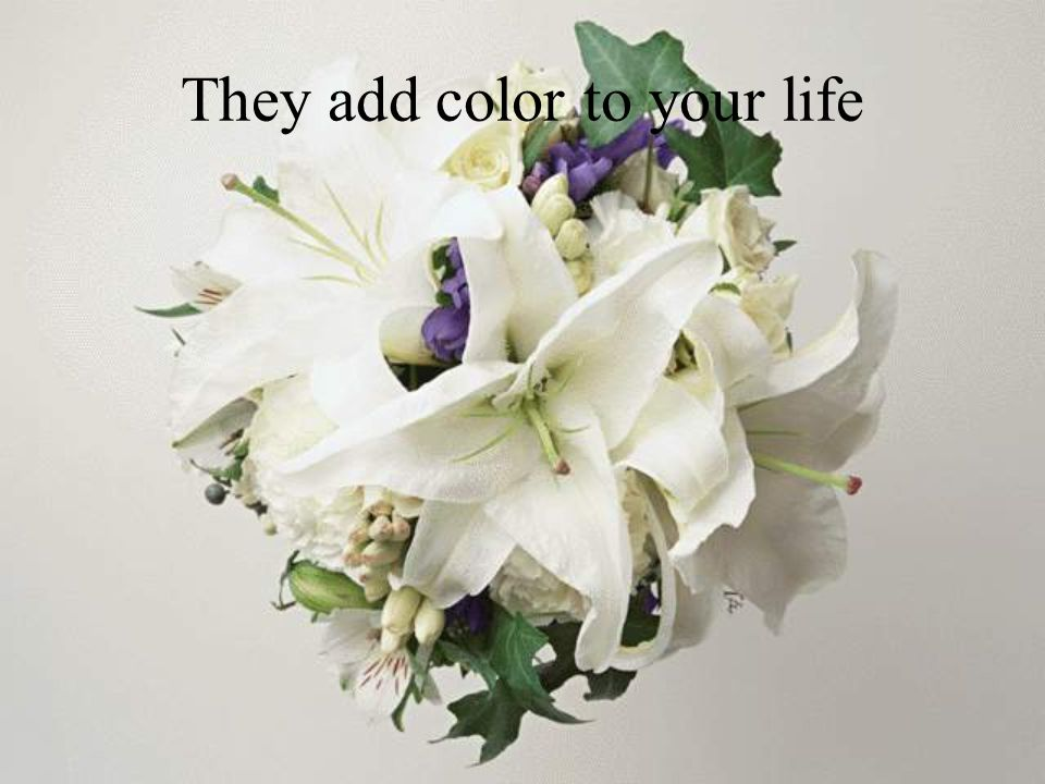 They add color to your life
