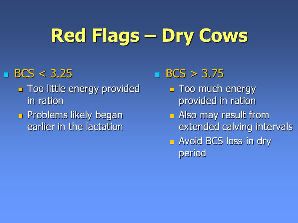 Red Flags – Dry Cows BCS < 3.25 BCS > 3.75