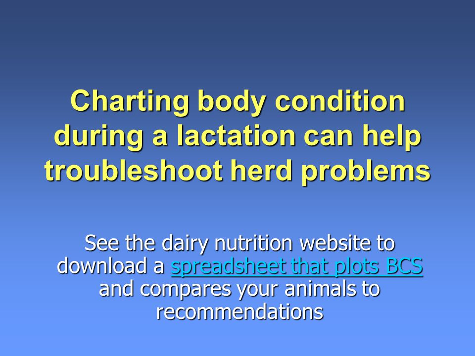 Charting body condition during a lactation can help troubleshoot herd problems
