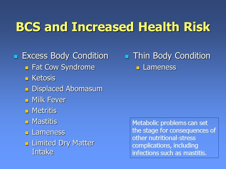 BCS and Increased Health Risk