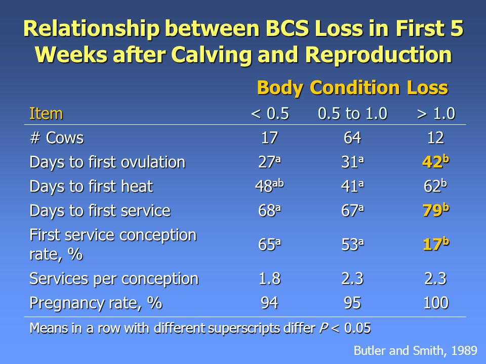Relationship between BCS Loss in First 5 Weeks after Calving and Reproduction