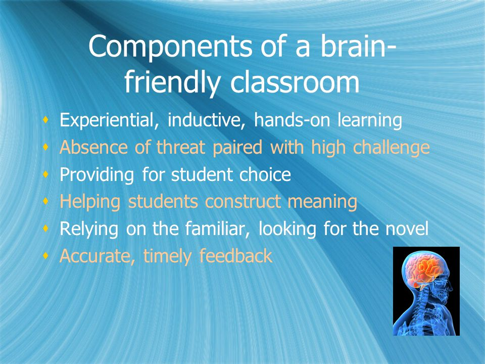 Components of a brain-friendly classroom