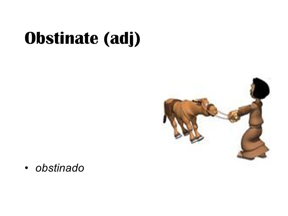 Obstinate (adj) obstinado