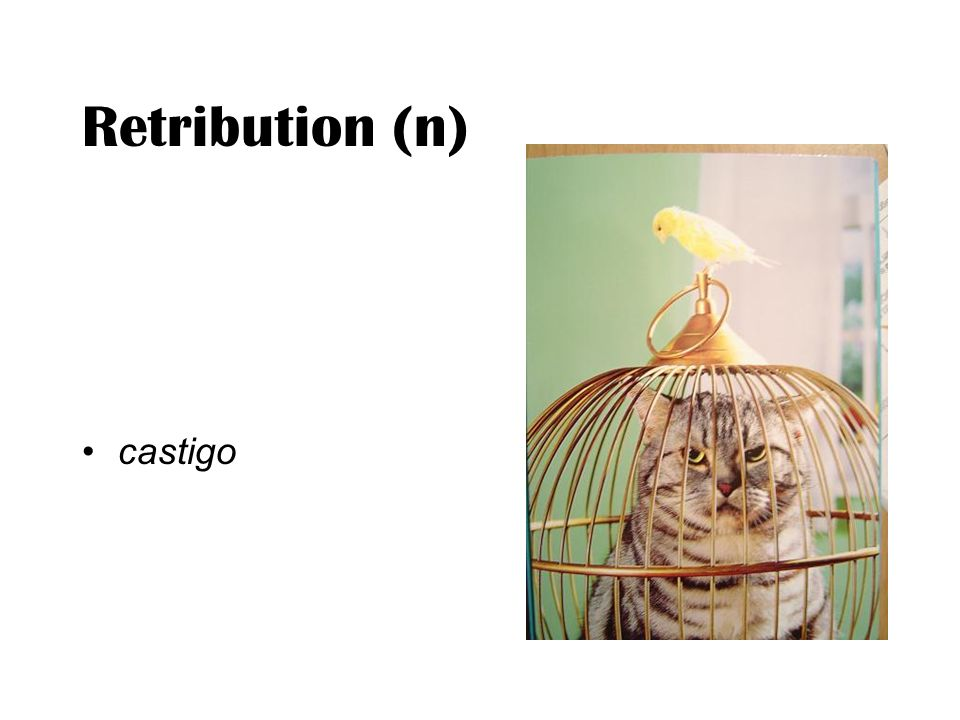 Retribution (n) castigo