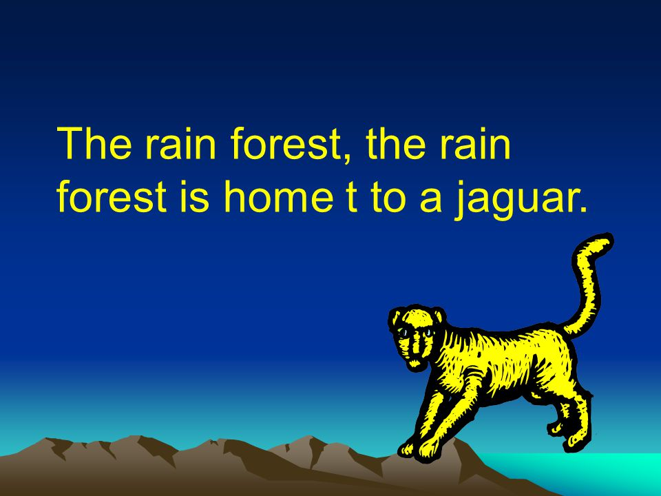 The rain forest, the rain forest is home t to a jaguar.
