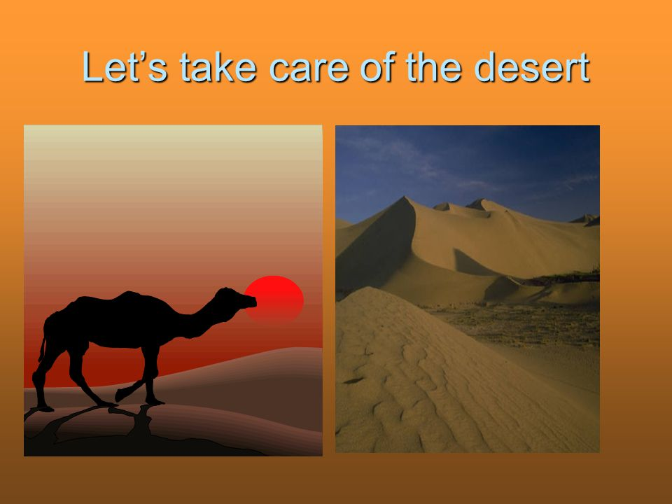 Let's take care of the desert