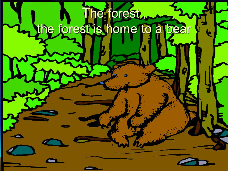 The forest , the forest is home to a bear