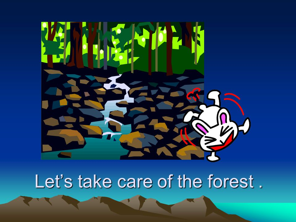 Let's take care of the forest .