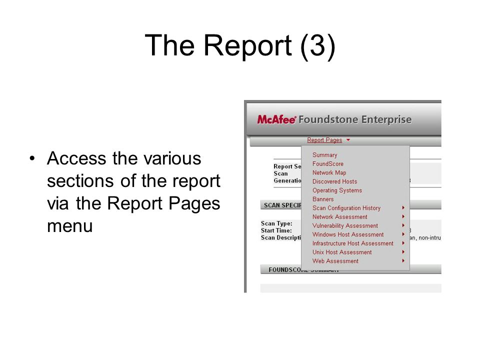 The Report (3) Access the various sections of the report via the Report Pages menu