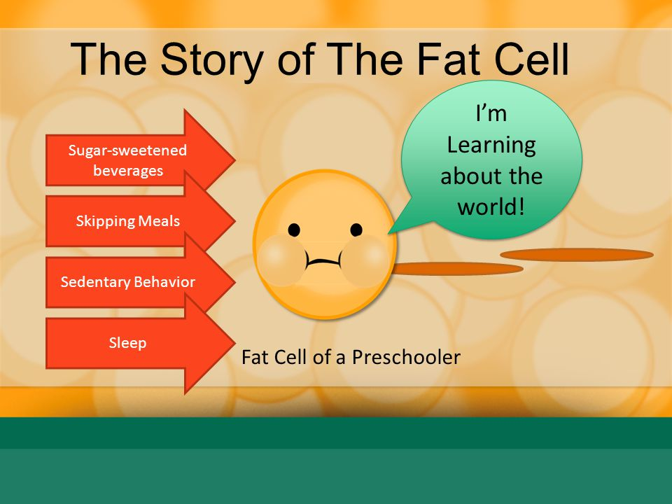 The Story of The Fat Cell