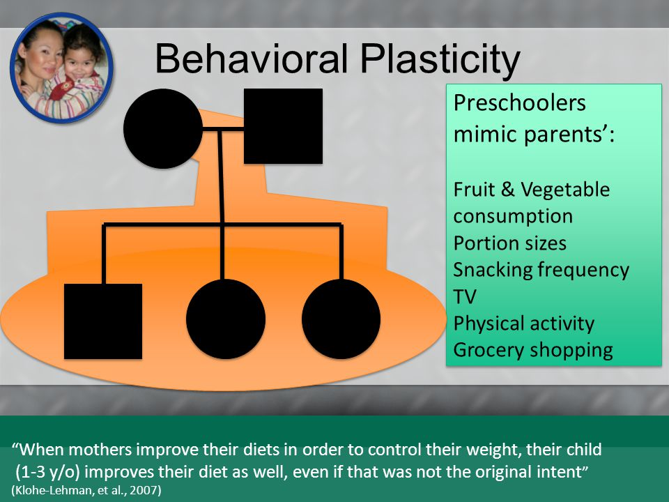 Behavioral Plasticity