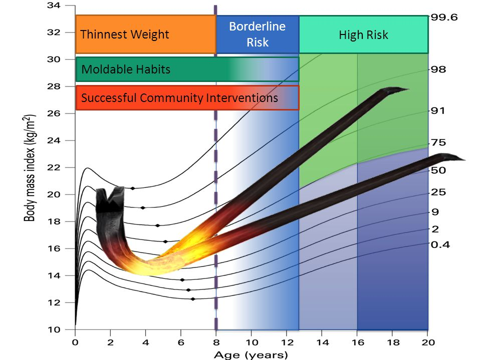 Thinnest Weight Borderline Risk High Risk Moldable Habits Successful Community Interventions
