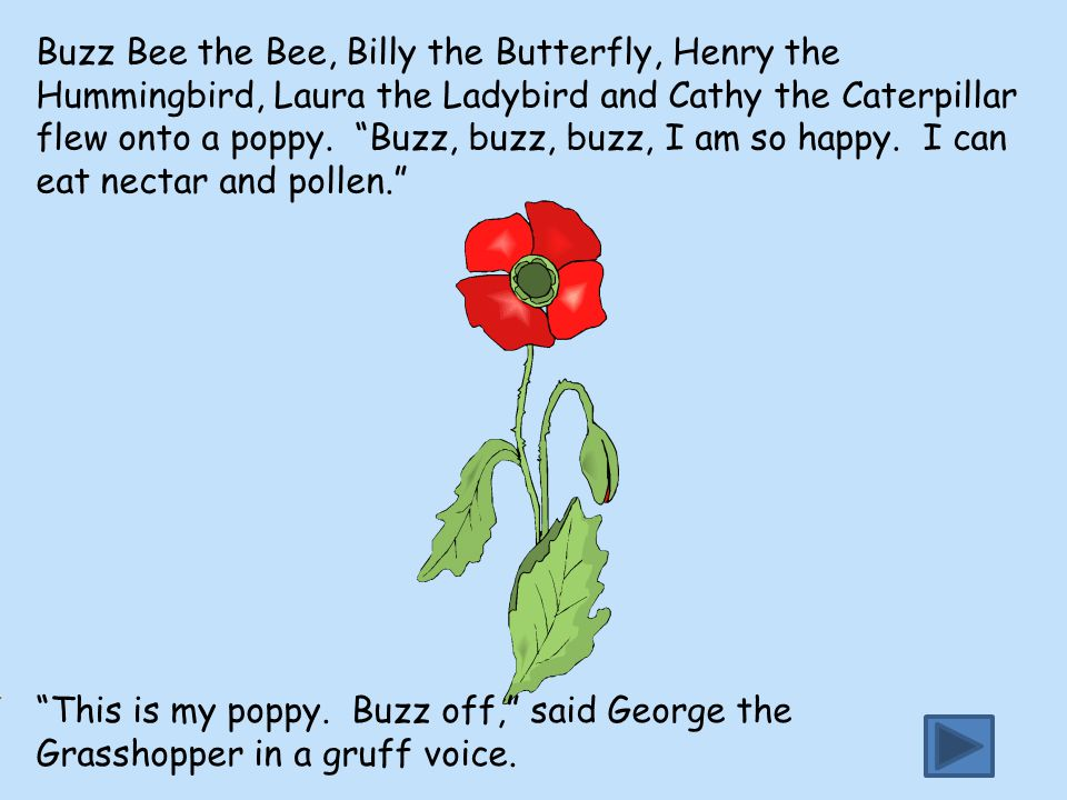 Buzz Bee the Bee, Billy the Butterfly, Henry the Hummingbird, Laura the Ladybird and Cathy the Caterpillar flew onto a poppy. Buzz, buzz, buzz, I am so happy. I can eat nectar and pollen.