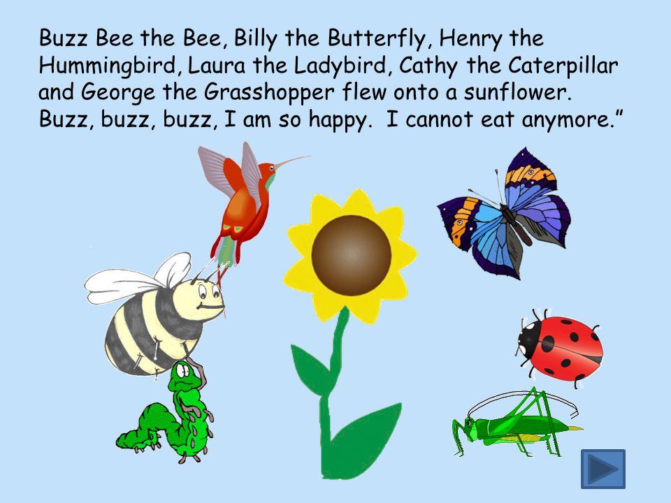 Buzz Bee the Bee, Billy the Butterfly, Henry the Hummingbird, Laura the Ladybird, Cathy the Caterpillar and George the Grasshopper flew onto a sunflower.