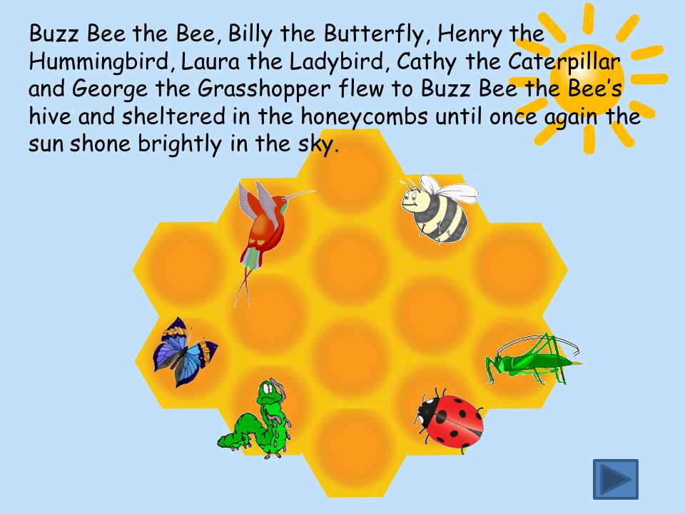 Buzz Bee the Bee, Billy the Butterfly, Henry the Hummingbird, Laura the Ladybird, Cathy the Caterpillar and George the Grasshopper flew to Buzz Bee the Bee's hive and sheltered in the honeycombs until once again the sun shone brightly in the sky.