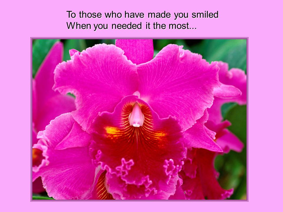 To those who have made you smiled