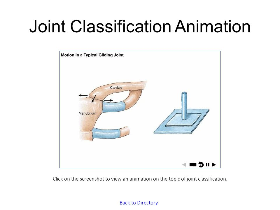 Joint Classification Animation