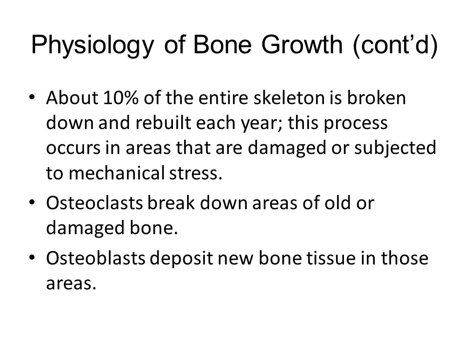 Physiology of Bone Growth (cont'd)