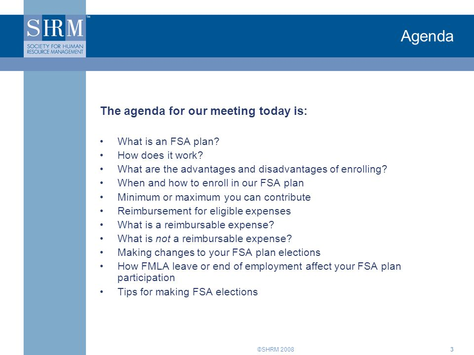 Agenda The agenda for our meeting today is: What is an FSA plan