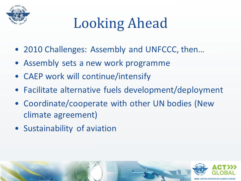 Looking Ahead 2010 Challenges: Assembly and UNFCCC, then…