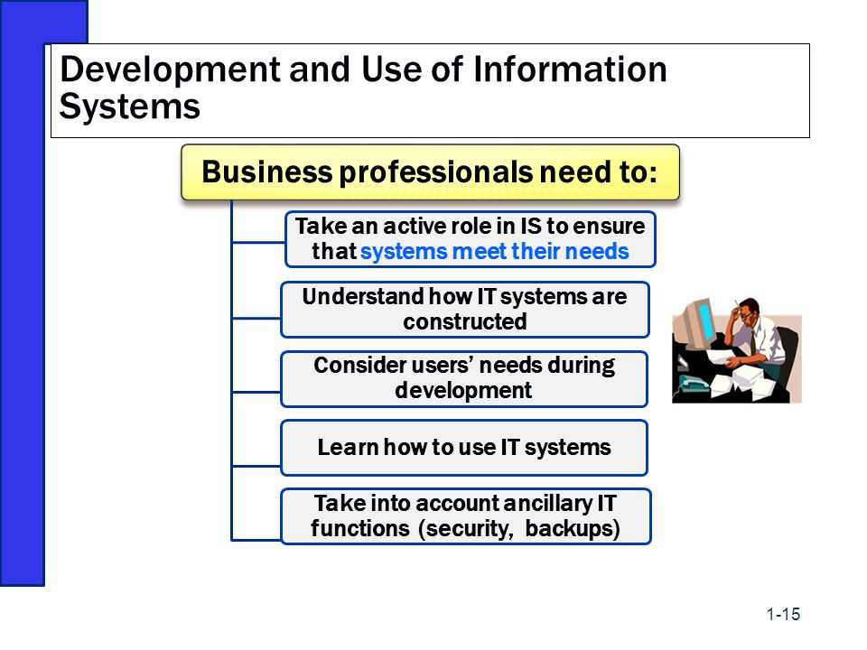 Development and Use of Information Systems