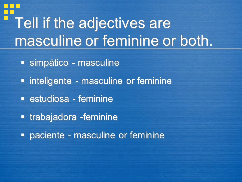 Tell if the adjectives are masculine or feminine or both.