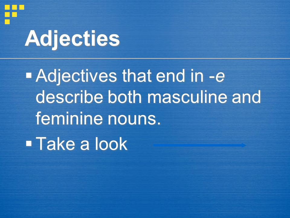 Adjecties Adjectives that end in -e describe both masculine and feminine nouns. Take a look