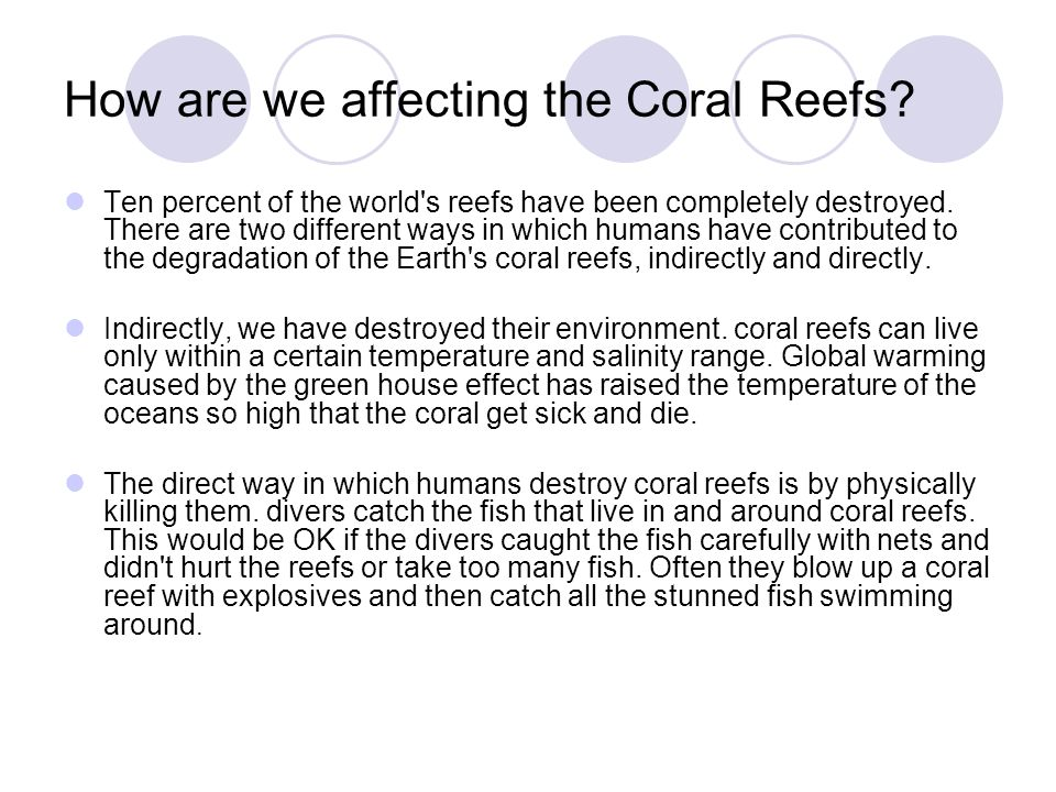 How are we affecting the Coral Reefs