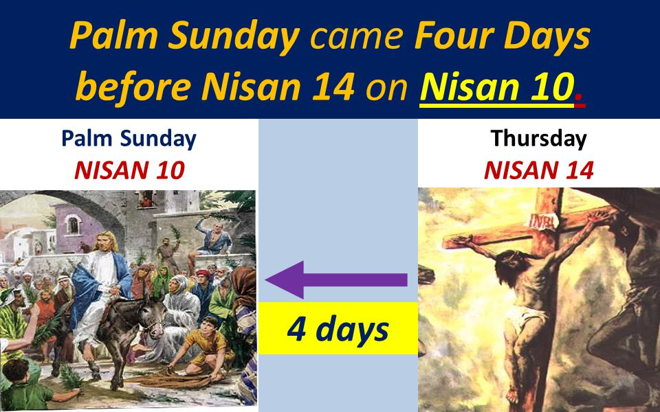 Palm Sunday came Four Days before Nisan 14 on Nisan 10.