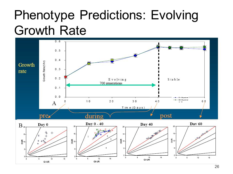 Phenotype Predictions: Evolving Growth Rate